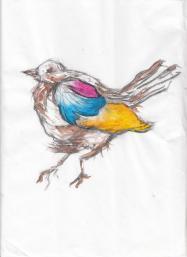 Birdie, 2013.
