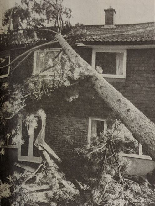 Great Storm 1987-2017 28