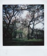 Polaroid - Prague, March 2019 - 7 - Vojanovy Sady Park