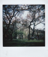 Polaroid - Prague, March 2019 - 7 - Vojanovy Sady Park